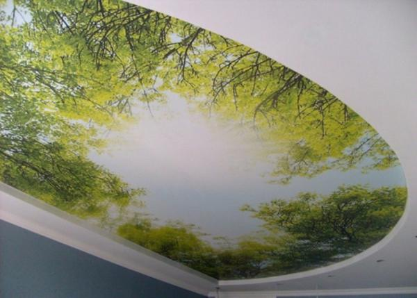 Изображение природы на натяжном потолке