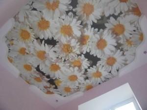 Потолок с узором из ромашек