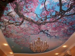 Небо и деревья на потолке