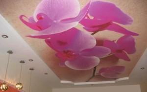 3Д изображение на потолке
