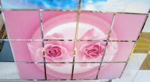 Розы на потолке