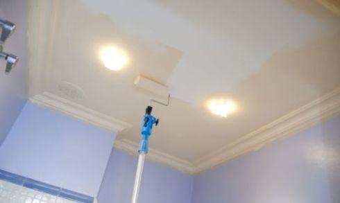 Краски для потолка распылительные мастика вици