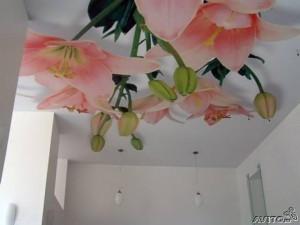 Декорированый красивый потолок